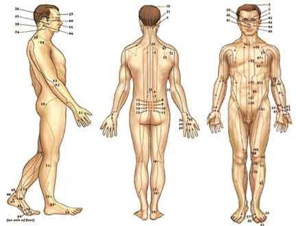 Meridianos da Acupunctura