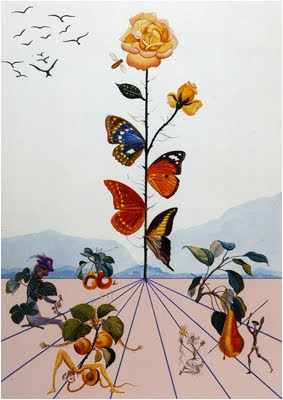 Salvador Dali Butterfly Paintings http://miishab.blogspot.com/2010/04/salvador-dali-and-night-of-butterfly.html