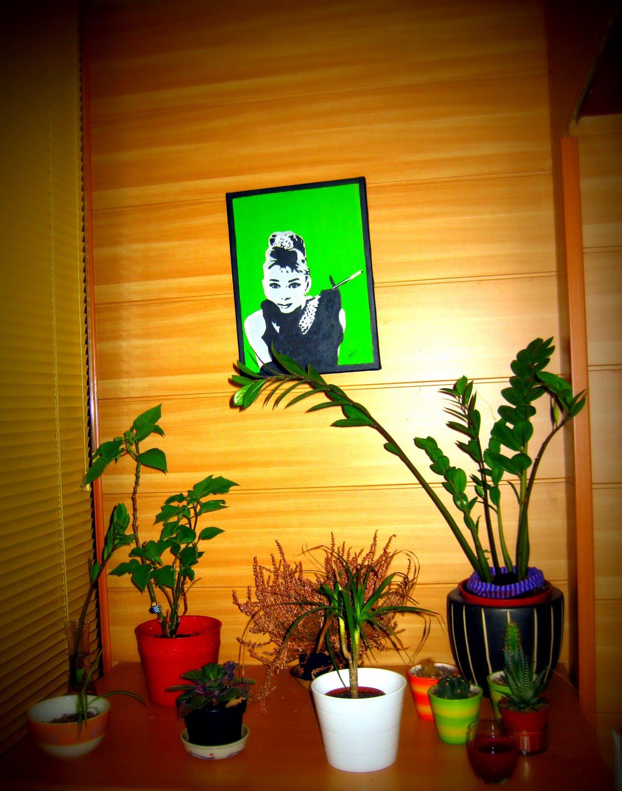 Mi arte los cuadros de la casa de sory - La casa del cuadro ...
