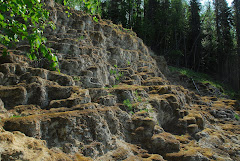 Tufa (minerals dissolved by hot springs and deposited as stone on surface)