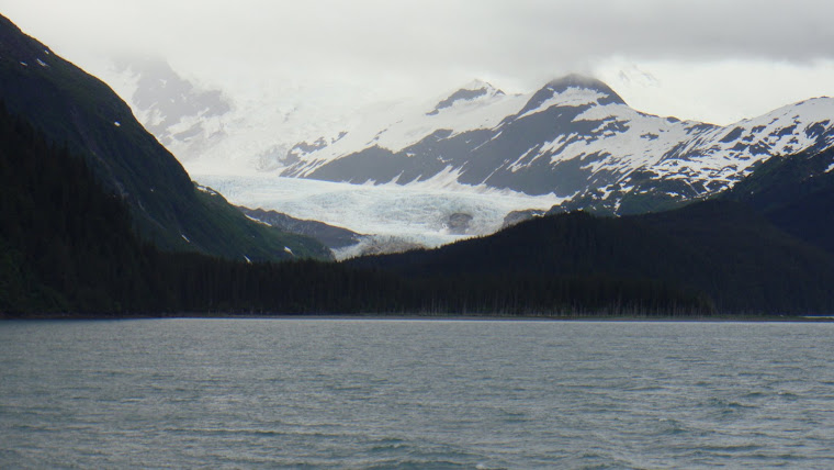 "Glacier With ""Blue Ice"" Seen From Ferry"