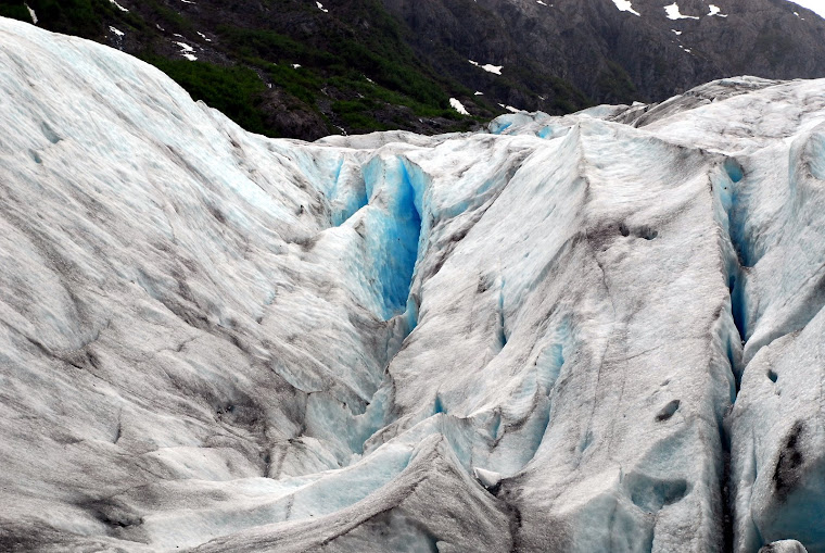 Close Up of Exit Glacier