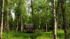 Getting Back Into Nature at Lucille Lake Park, 2 miles From Wasilla, Alaska For Four Days