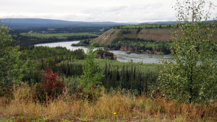Passing the Yukon River on Our Way to Whitehorse, Alaska