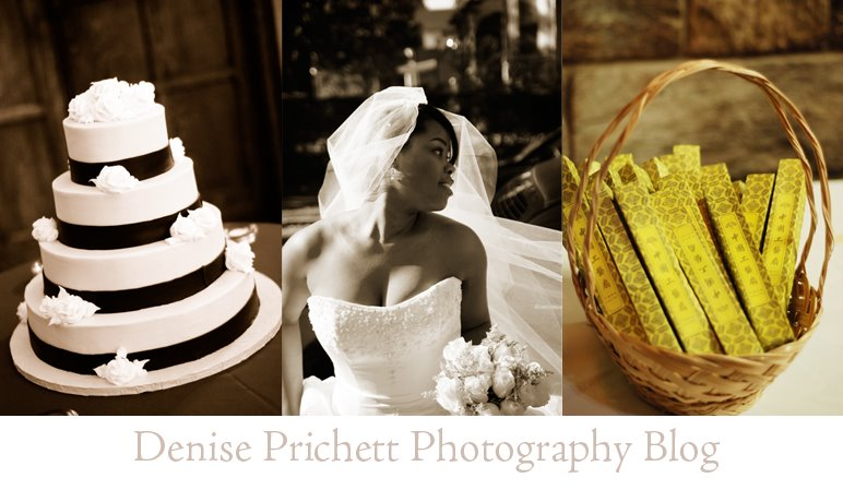 Denise Prichett Photography Blog