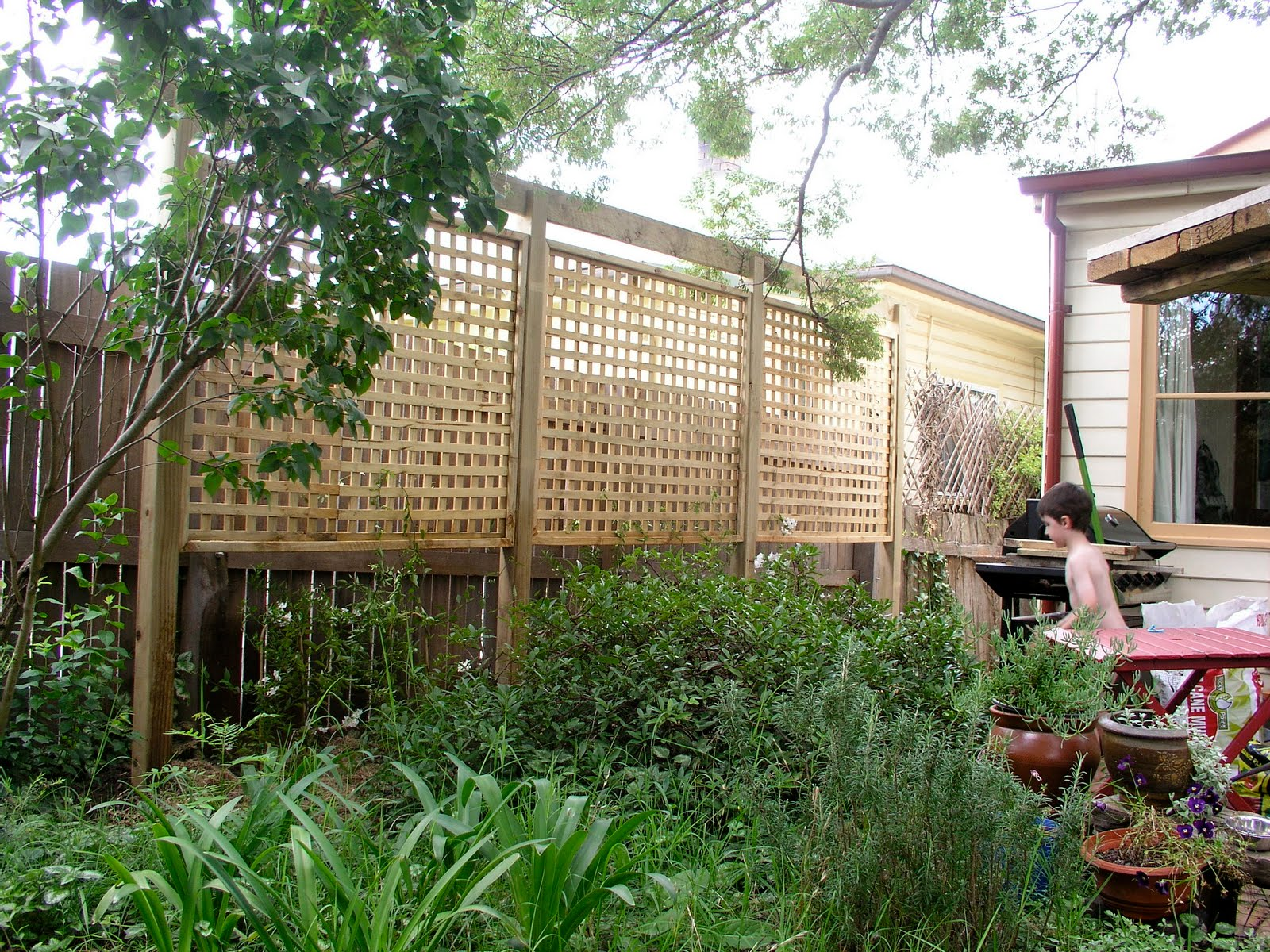 Privacy screens lattices and screens on pinterest for Lattice yard privacy screen