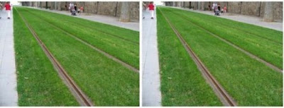 Grass Track Opitcal Illusion