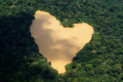 Amazonian Heart Optical Illusion