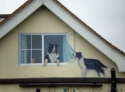Windows with Animals(Dogs) Illusion