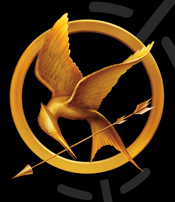 Mocking Jay photo