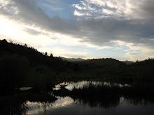 Temple Fork Beaver Dam