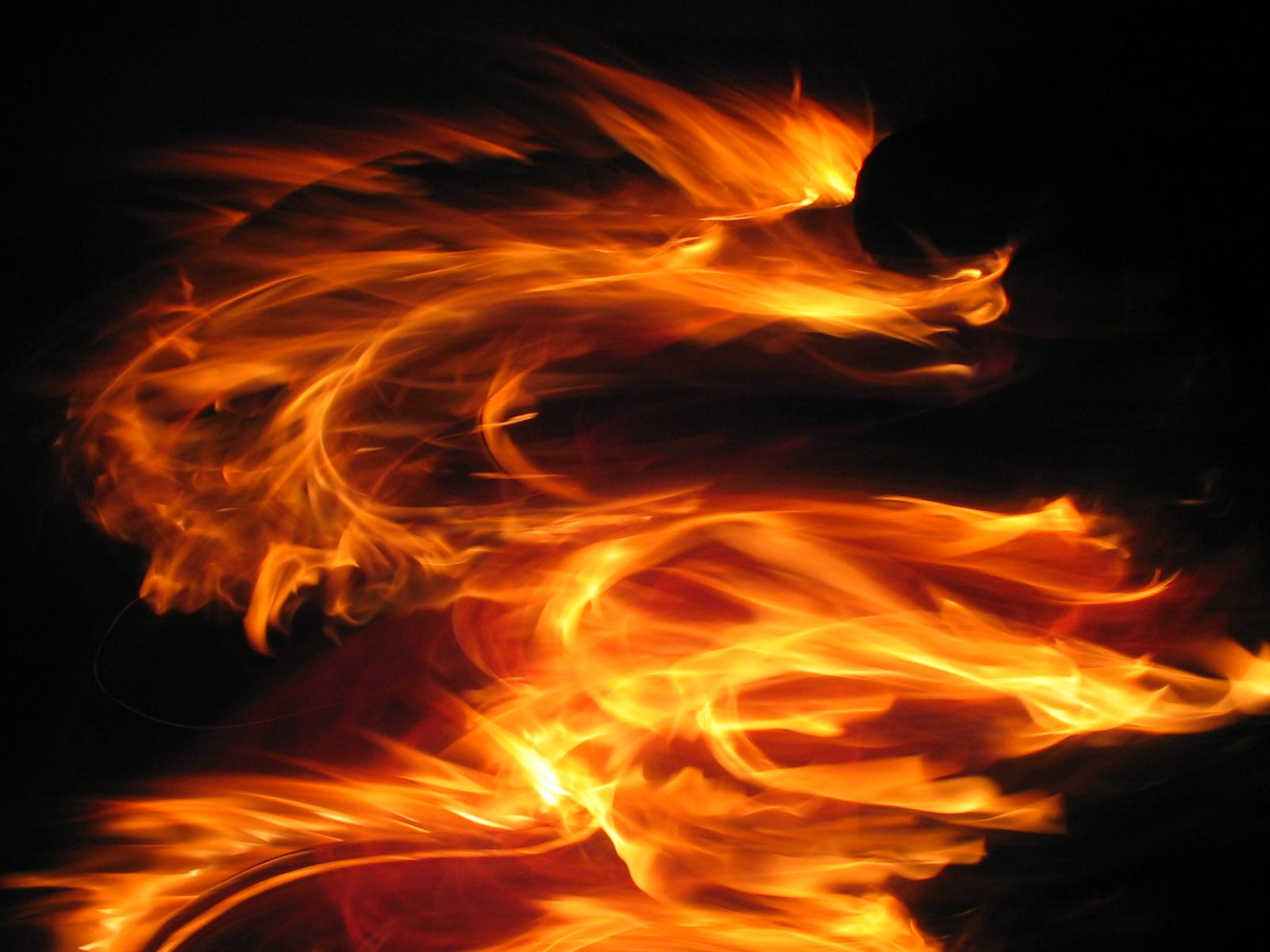 http://3.bp.blogspot.com/_gM7HAk5JYvI/TSEbuuKreoI/AAAAAAAAAHg/_97rpU5zlJk/s1600/fire_dragon.jpg