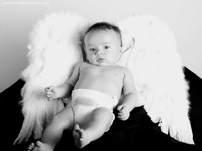 wallpaper babies. wallpaper baby angel