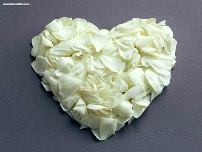 amor corazones. fondos de amor.