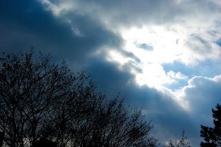 cloudy, weather, sunny, tirgu mures, targu mures, meteo, wind, pressure, rain, sun, february, 2009