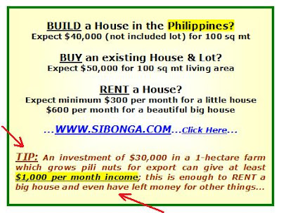 modern house designs in philippines. modern house design in the