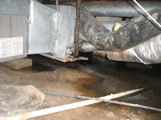 american basement solutions musty odor or sewage leak