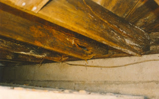 American Basement Solutions How To Fix And Repair Floor Joist Rot