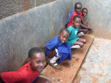 Use of the Girls's Urinals in schools