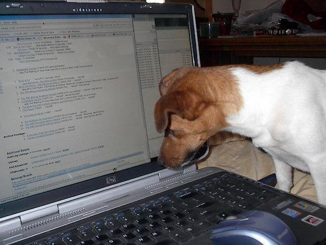 If the dog is computer savvy I guess I can blog!