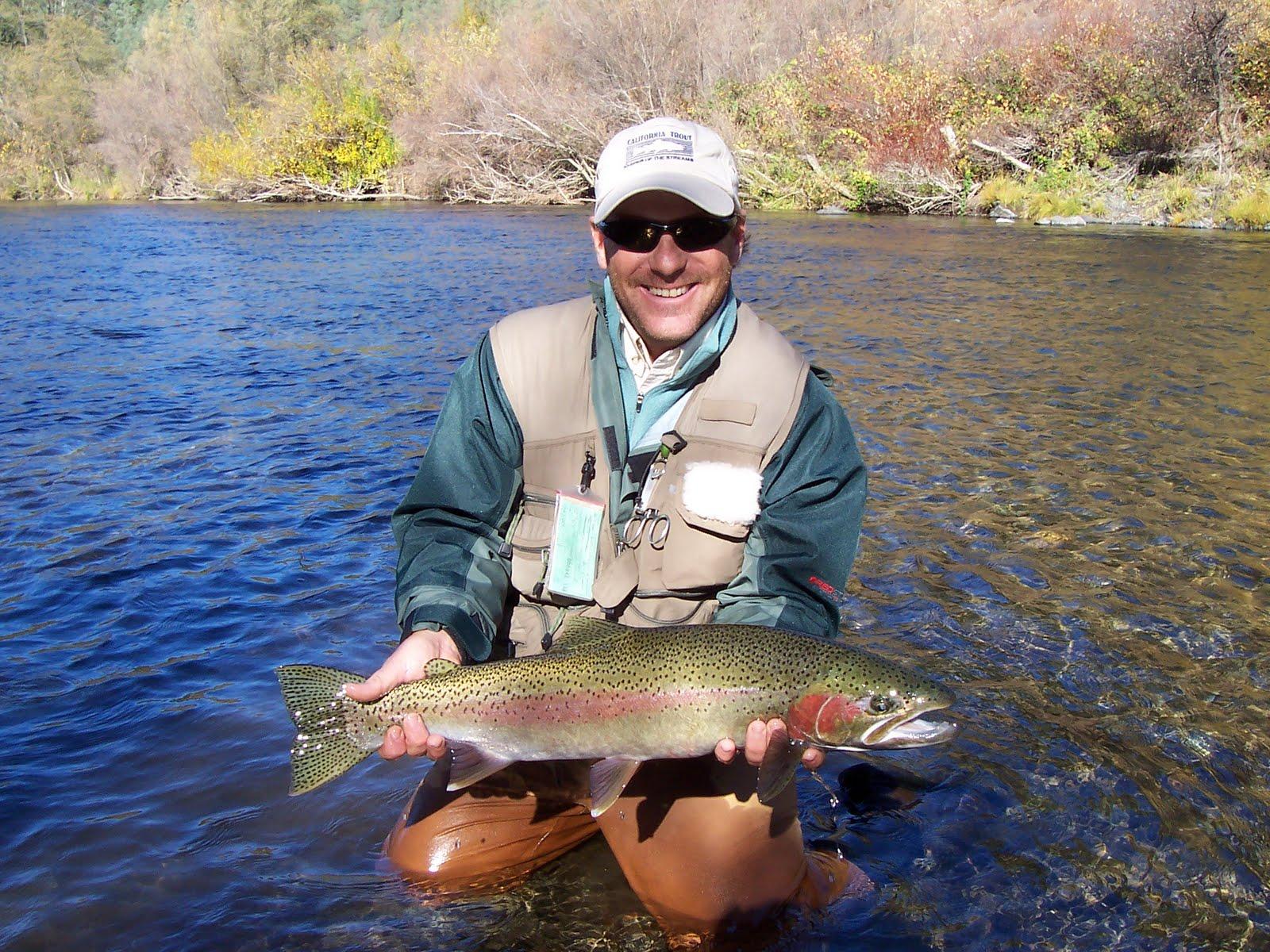 Northern sierra fly fishing a visual ode to steelhead for Sierra fly fishing