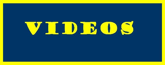 ANDRES FRANZOIA / Videos