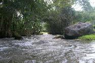 desejo ser sempre como o meu/nosso rio