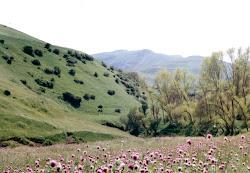 منظره زیبا از روستای قوزلو