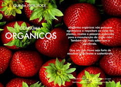 MORANGOS ORGÂNICOS