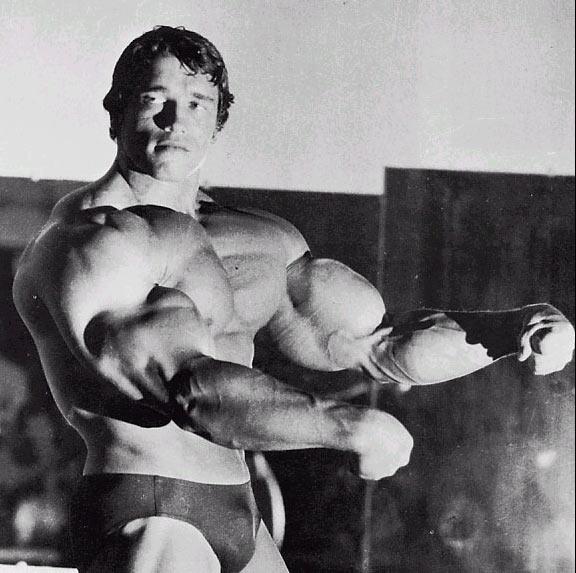 arnold schwarzenegger bodybuilding pictures. arnold schwarzenegger