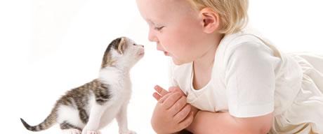 [pets-vs-kids.jpg]
