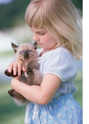 [girl_kitten.jpg]