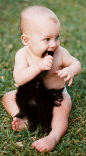 http://3.bp.blogspot.com/_gTJMEP-c2fo/SMjGpMPUlpI/AAAAAAAAEsE/9K6-c97UglQ/s1600/CatTail.jpg