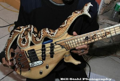 Crazy guitars photos