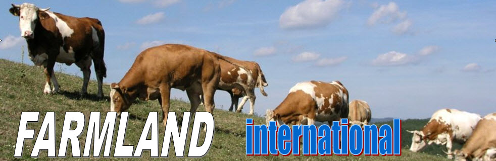 FARMLAND INTERNATIONAL