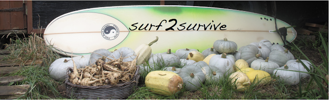 surf2survive