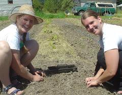 Llyn and Danielle planting onions