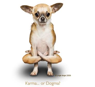 http://3.bp.blogspot.com/_gWqerMk_ui0/SeEUN4vMdjI/AAAAAAAAGgQ/WJadQWZor58/s400/yoga_dog.png