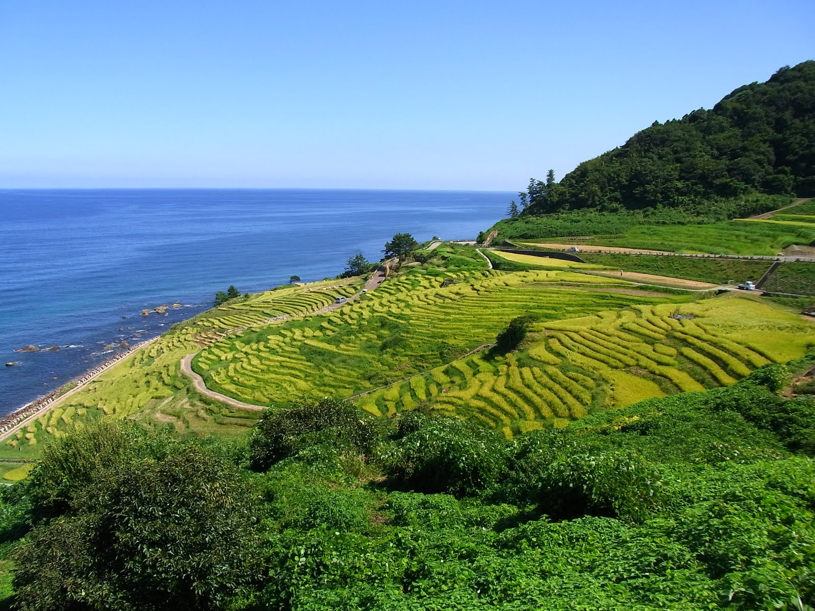 Noto Japan  city pictures gallery : ... north coast of noto hanto noto hanto is very hilly with few large flat
