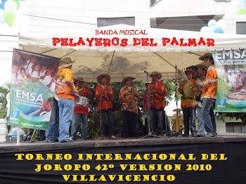 Torneo Internacional del Joropo 2010