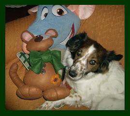 Baggio coi suoi amici Paco e Ratatouille