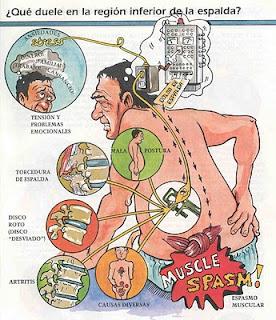 tratamento osteopatia dor lombar cervical torcicolo dor de cabeça refluxo costas