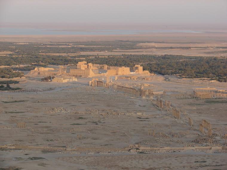 Vista de Palmira