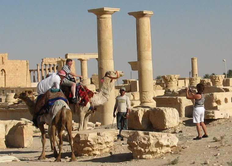 El camello I