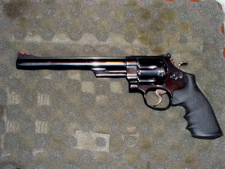 Smith &amp; Wesson Model 29