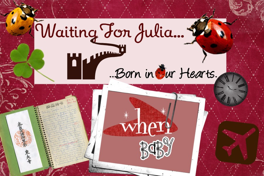 Waiting for Julia:  Born in our hearts