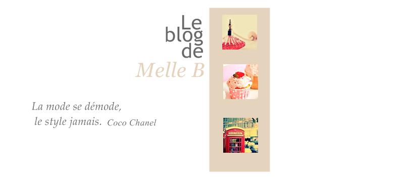 Le blog de Melle B