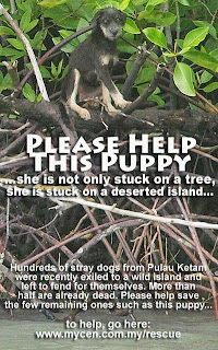 The Pulau Ketam Dogs Appeal