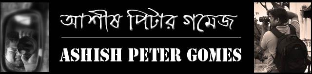 Ashish Peter Gomes