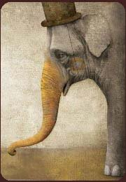 GaBRiel Pacheco